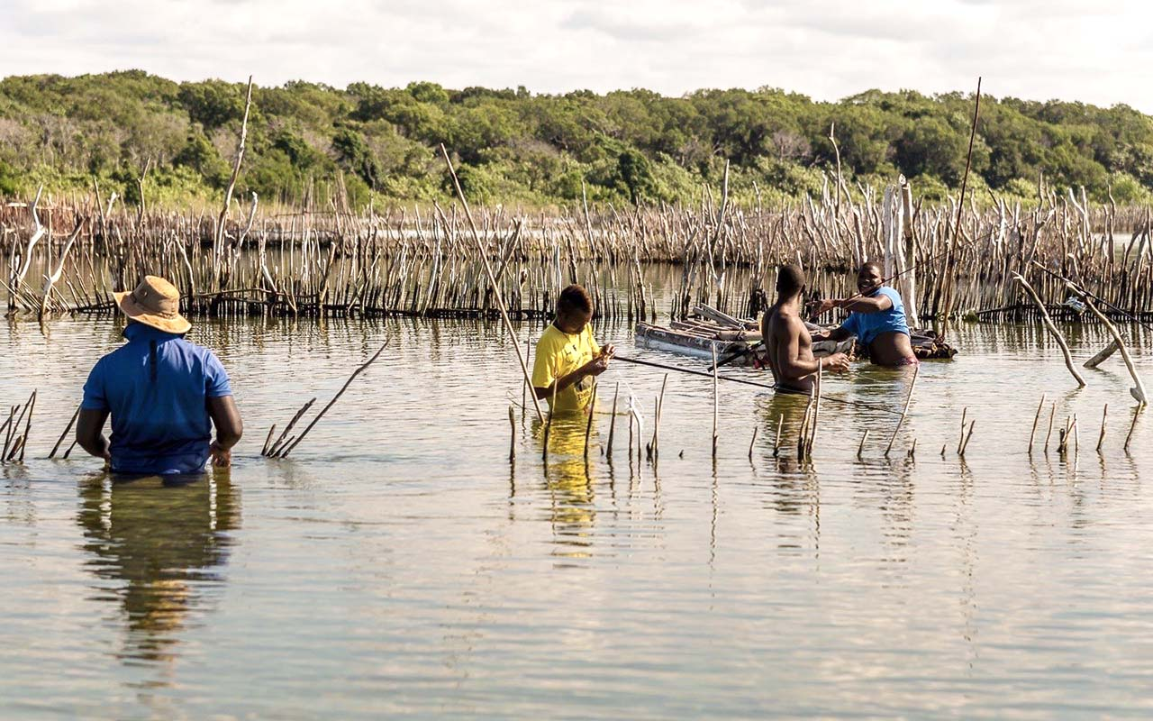 Local Tsonga fishermen checking the ancient fish traps in Kosi Bay